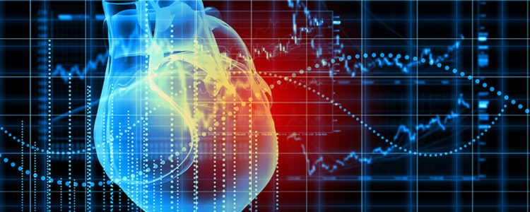 Cardiovascular disease in women: A journey toward a focus on
